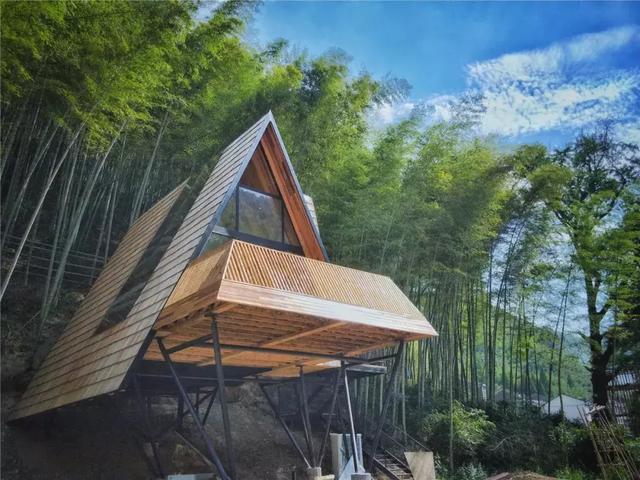 树蛙部落丨从森林里长出来的轻户外生活体验村