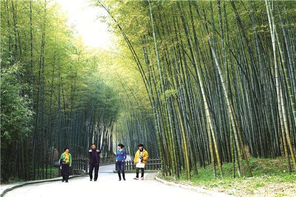 乡村旅游发展看无锡:情归故里,梦回乡村